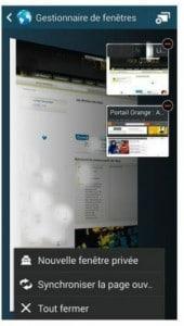 Gérer plusieurs fenêtres dans l'application Internet
