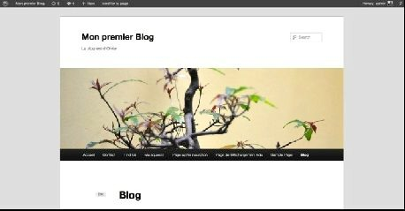 exemple-blog-wordpress