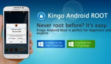 Root with Kingo Une
