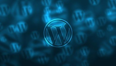Image représentant le logiciel WordPress